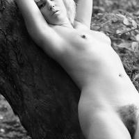 Trees-07